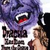 Gledaj Dracula Has Risen from the Grave Online sa Prevodom