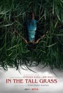 Gledaj In the Tall Grass Online sa Prevodom