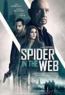 Gledaj Spider in the Web Online sa Prevodom