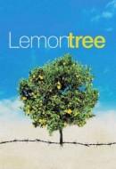 Gledaj Lemon Tree Online sa Prevodom