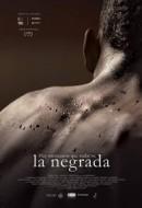 Gledaj Black Mexicans Online sa Prevodom