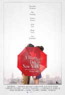 Gledaj A Rainy Day in New York Online sa Prevodom