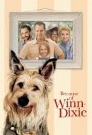 Gledaj Because of Winn-Dixie Online sa Prevodom