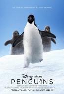 Gledaj Penguins Online sa Prevodom