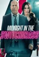 Gledaj Midnight in the Switchgrass Online sa Prevodom
