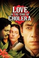 Gledaj Love in the Time of Cholera Online sa Prevodom