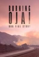 Gledaj Burning Ojai: Our Fire Story Online sa Prevodom