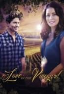 Gledaj Love in the Vineyard Online sa Prevodom