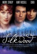 Gledaj Silkwood Online sa Prevodom