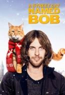 Gledaj A Street Cat Named Bob Online sa Prevodom