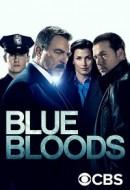 Gledaj Blue Bloods Online sa Prevodom