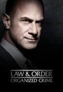 Gledaj Law & Order: Organized Crime Online sa Prevodom