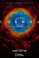 Gledaj Cosmos: Possible Worlds Online sa Prevodom