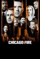 Gledaj Chicago Fire Online sa Prevodom