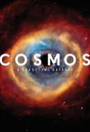 Gledaj Cosmos: A Spacetime Odyssey Online sa Prevodom