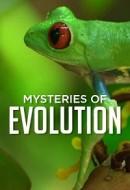 Gledaj Mysteries of Evolution Online sa Prevodom