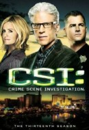Gledaj CSI: Crime Scene Investigation Online sa Prevodom