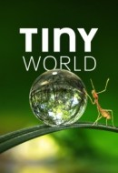 Gledaj Tiny World Online sa Prevodom