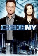 Gledaj CSI: NY Online sa Prevodom