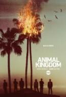 Gledaj Animal Kingdom Online sa Prevodom