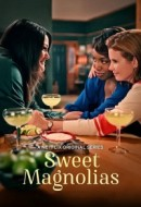 Gledaj Sweet Magnolias Online sa Prevodom