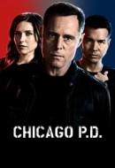 Gledaj Chicago P.D. Online sa Prevodom