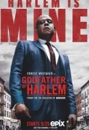 Gledaj Godfather of Harlem Online sa Prevodom